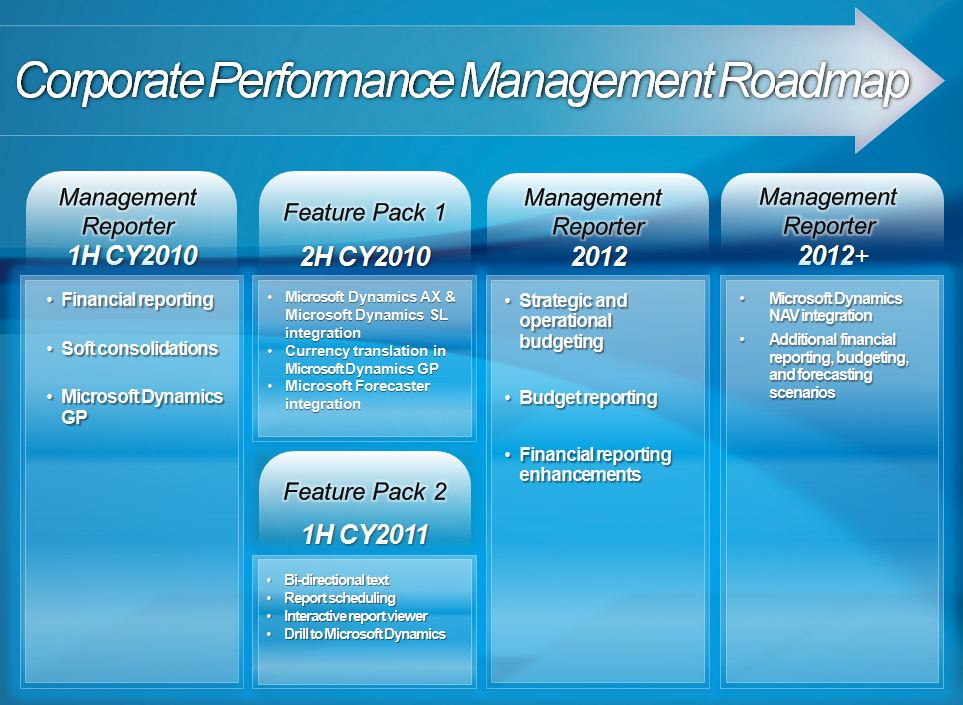 specializing in Microsoft business solutions implementation – Reporting Roadmap